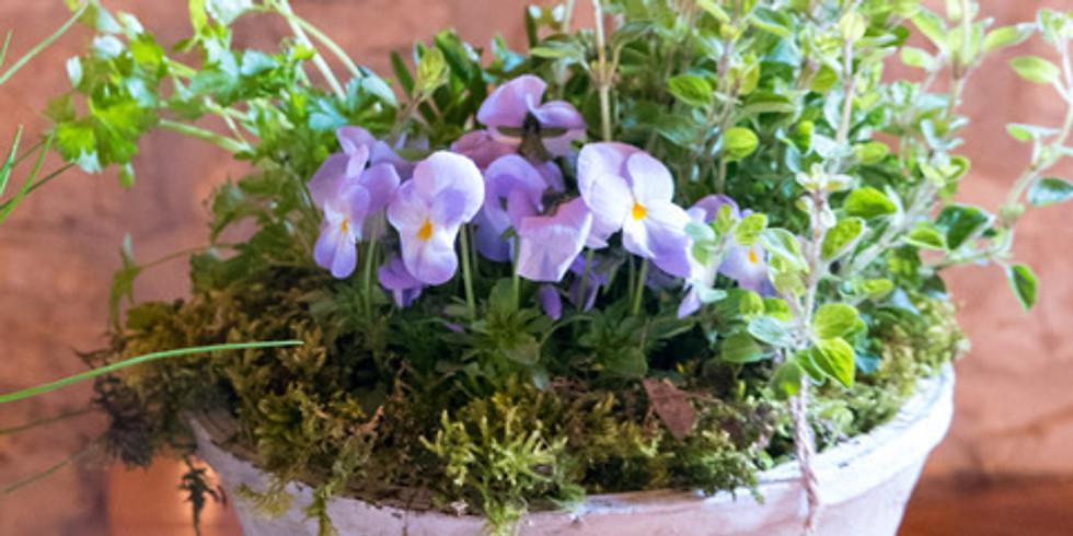 'Spring Greens' Eco Marché