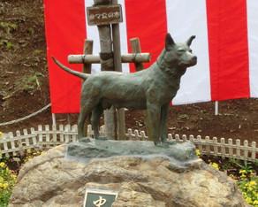 衣笠山公園の忠犬タマ公(横須賀市)