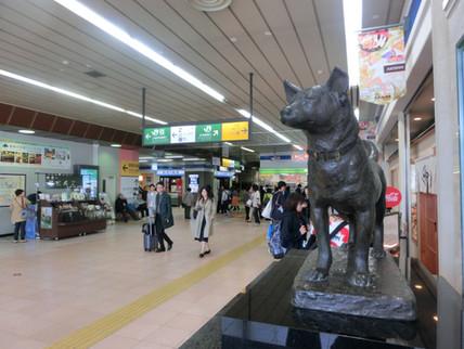 新潟駅の忠犬タマ公像(新潟市)