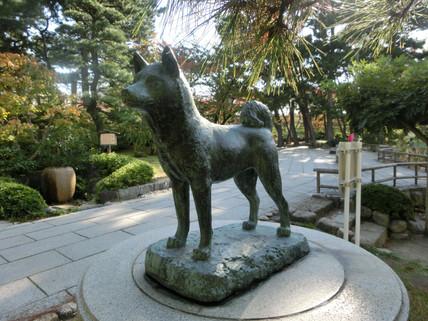 白山公園の忠犬タマ公像(新潟市)