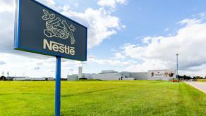 Nestlé anuncia lanzamiento de camarones y huevos hechos a base de plantas