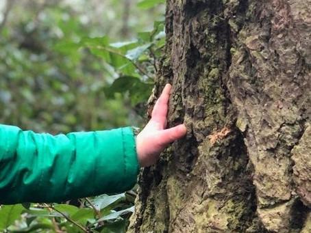Fidalgo Nature School Awarded $75K to Get Kids Outside!