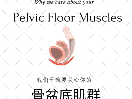 Why we care about your Pelvic Floor Muscles?