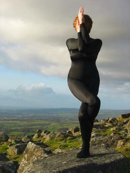 Sibylla DartmoorEagle.jpg