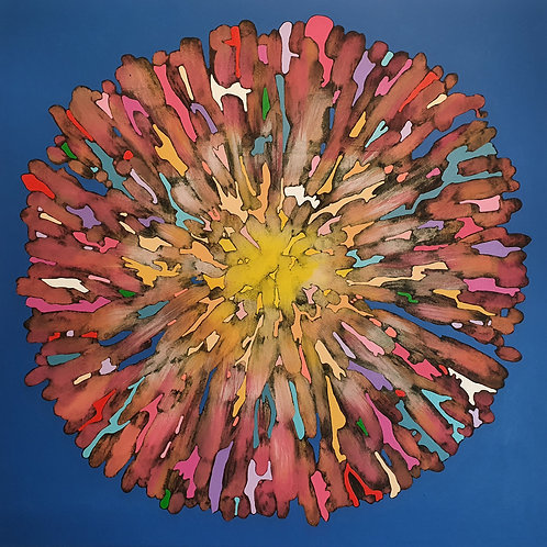 Petal Explosion - limited edition giclée print 50cm x 50cm