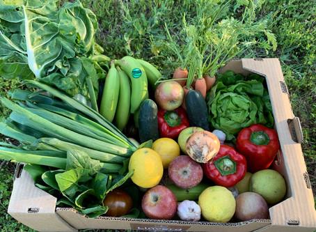 Beneficios del producto ecológico