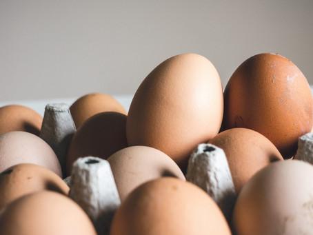 La verdad de los huevos ecológicos