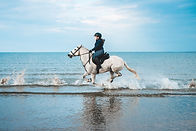 horse rider on a beach.jpg