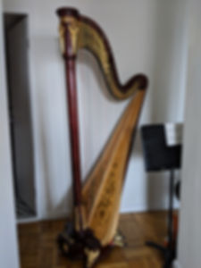 Harp For Rent by Kathleen Hartnett.jpg