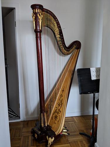 Harp For Rent by Kathleen Hartnett.jpg