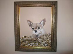 Tinkerbell framed