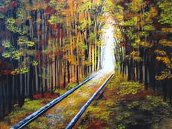Walking Along The Tracks