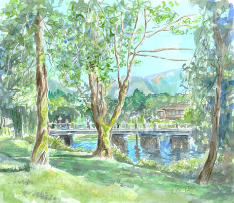 Bridge Over River Quw'utsun