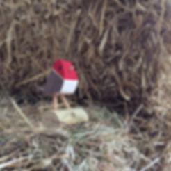 Birdham Animal Feeds Robin