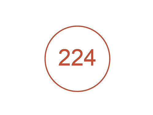 Número 224