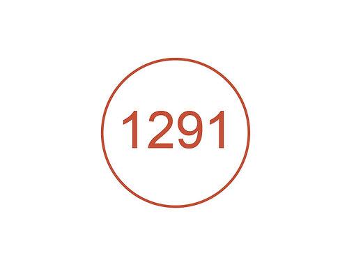 Número 1291