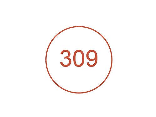 Número 309
