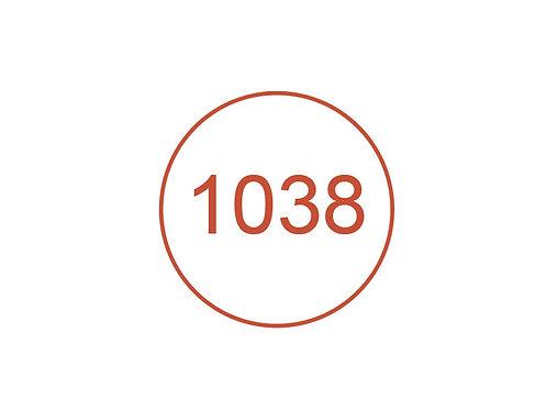 Número 1038