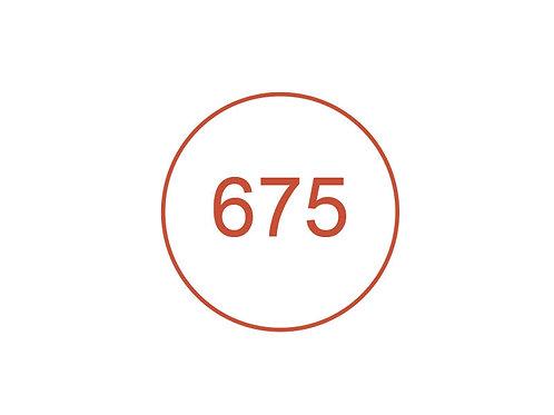 Número 675