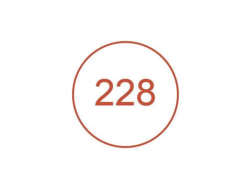 Número 228