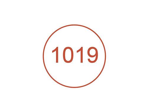 Número 1019