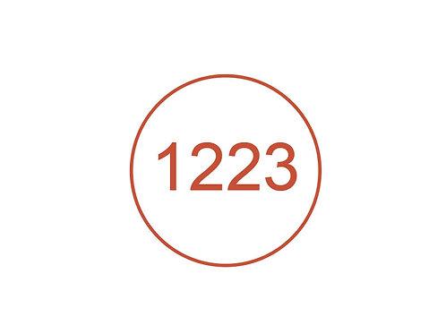 Número 1223