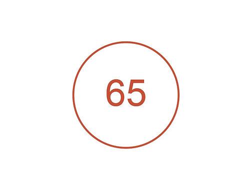 Número 65