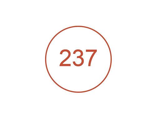Número 237