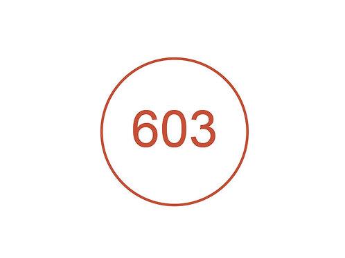 Número 603