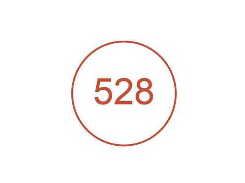 Número 528