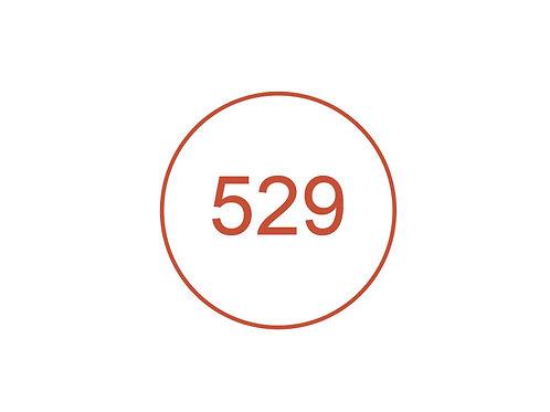 Número 529