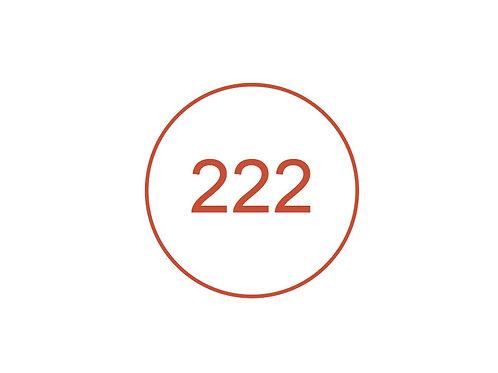 Número 222