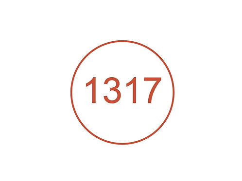 Número 1317