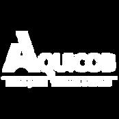 AQUICOB---LOGOMARCA---RETANGULAR---BRANC