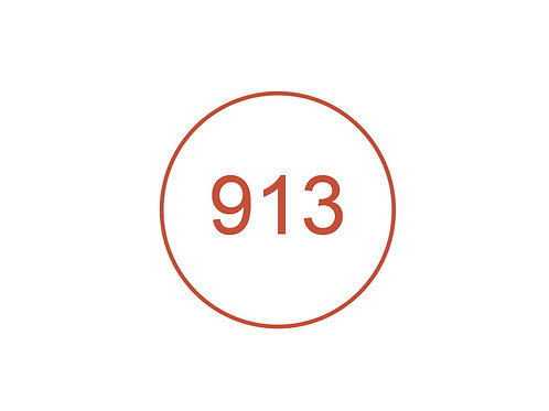 Número 913