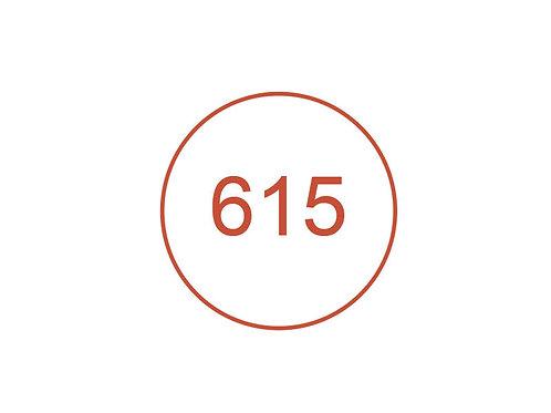 Número 615
