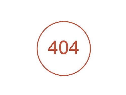 Número 404