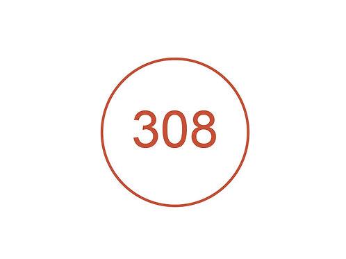 Número 308