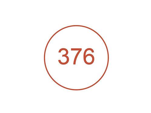 Número 376