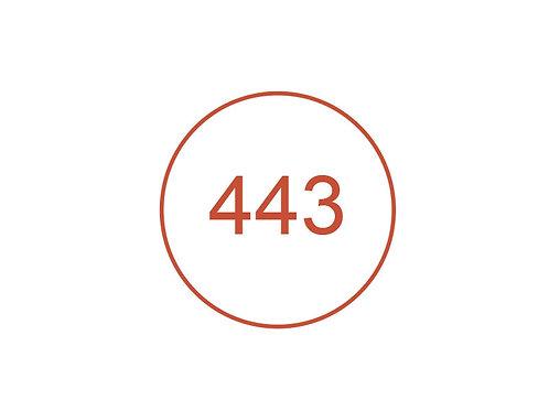 Número 443