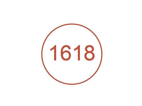 Número 1618