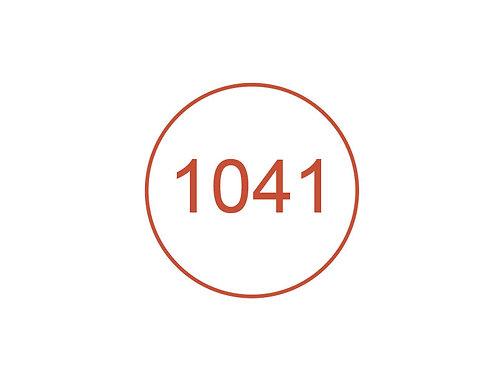 Número 1041