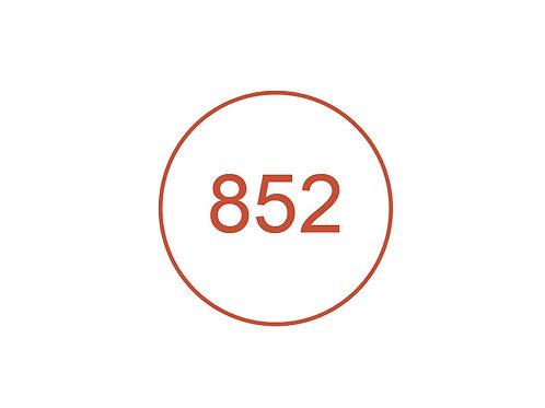 Número 852