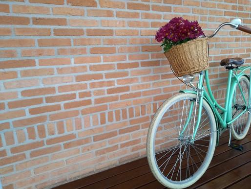 Um método ecológico de transportes: As bicicletas holandesas