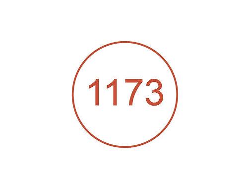 Número 1173