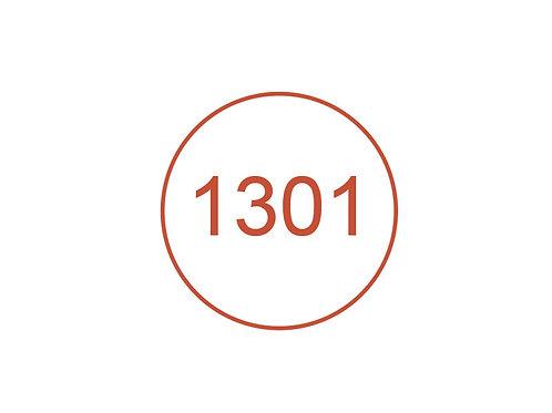 Número 1301