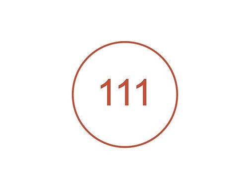 Número 111