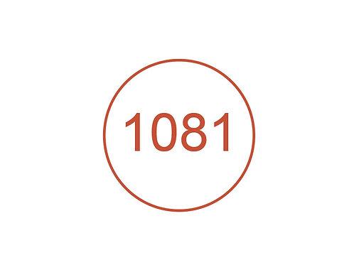 Número 1081