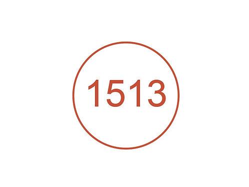 Número 1513