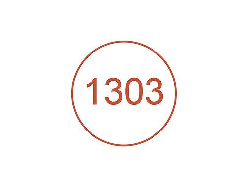 Número 1303